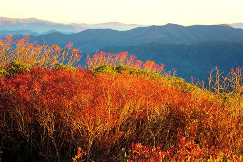 blue ridge parkway fall colors 301 moved permanently