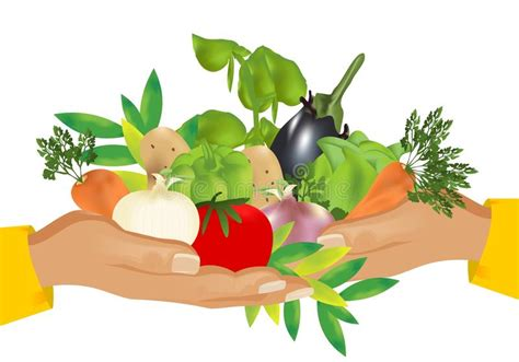 uzbek food stock photos royalty free images vectors healthy food vegetables cdr vector stock vector