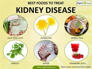 home remedies for kidney disease organic facts