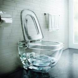 a glass toilet bowl polar light