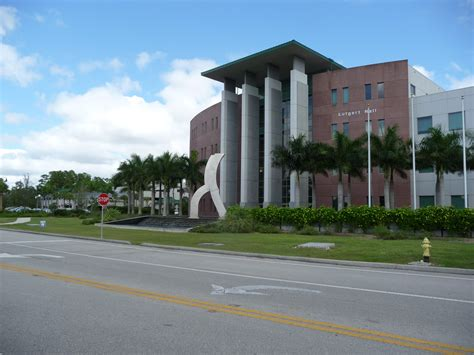 Of Florida Mba Class Size by Florida Gulf Coast Physical Therapy Graduate