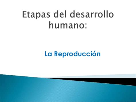 etapas del desarrollo 8425428602 etapas del desarrollo humano