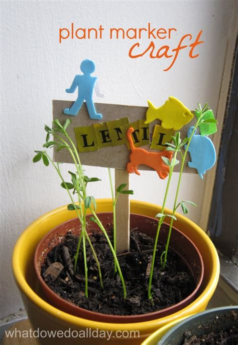 indoor gardening activity kid  plant markers