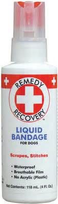 liquid bandage for dogs remedy recovery liquid bandage for dogs jeffers pet