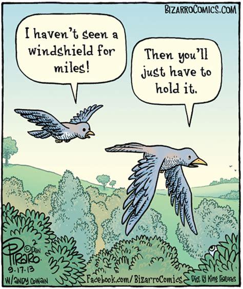 Bird Shit Meme - birds on a road trip