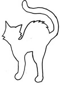 shelterpop cat template flickr photo