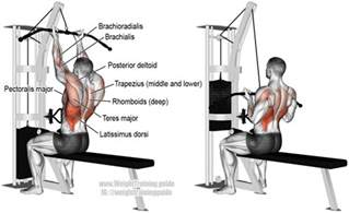 grip lat pull and weight