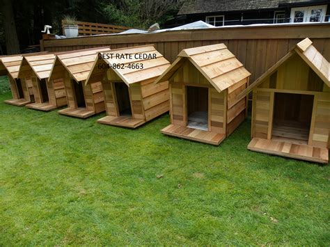 custom made dog houses best rate cedar