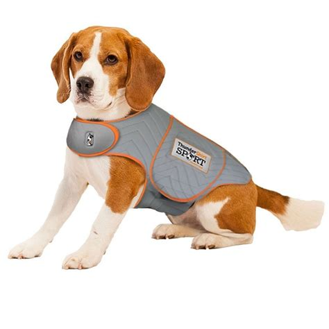 thundershirts for dogs top 5 anxiety vests to calm stressed dogs