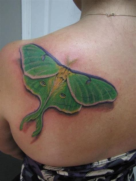luna moth tattoo moth decorate me