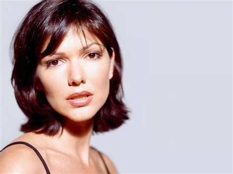 actress usa mexican actress and former miss usa laura harring hot