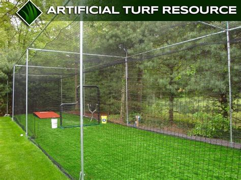 batting cage in backyard baseball