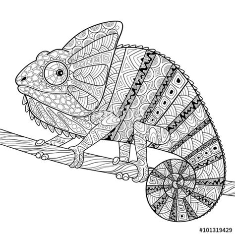 coloring pages for adults chameleon quot chameleon adult antistress coloring page black and