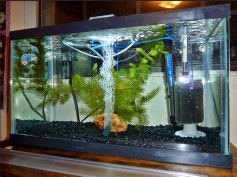 jenis  harga aquarium  populer dijual