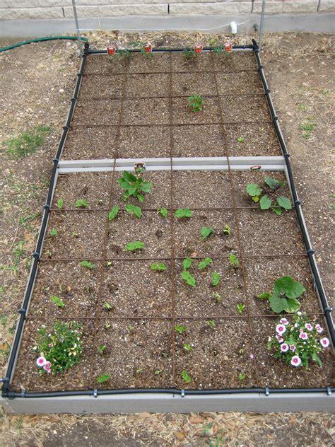 square foot gardening   The How Do Gardener?