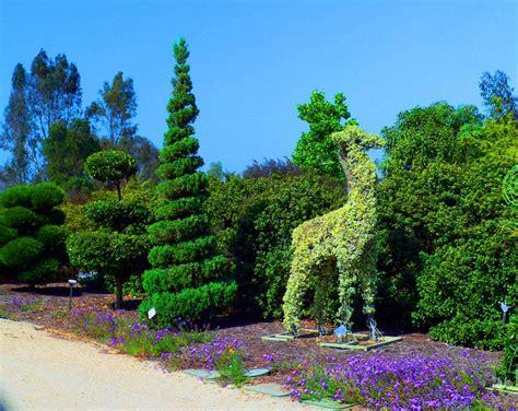 Landscape Character Definition Cuyamaca College Garden Festival Offers Potpourri