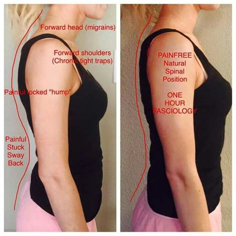 fascia blasting for the tummy the 25 best ideas about fascia blaster on