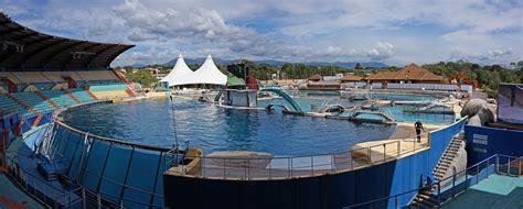 killer whale pool file marineland killer whale pool jpg wikimedia commons