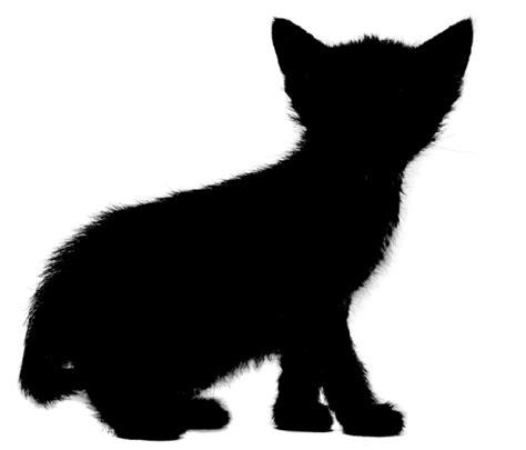 Paint Brushkuas Cat Crocodile 50 free cat silhouette free clip free