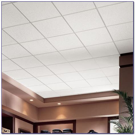 Dune Max Ceiling Tiles by Armstrong Dune 2x4 Ceiling Tile Ceiling Home
