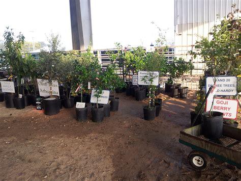 Olive Garden Slidell La by Garden Shows 2011 2012 2013