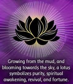 Significance Of Lotus In Buddhism 1000 Ideas About Lotus Meaning On Tattoos