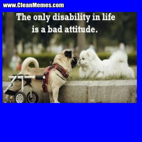 Disability Memes - only disability in life clean memes the best the most