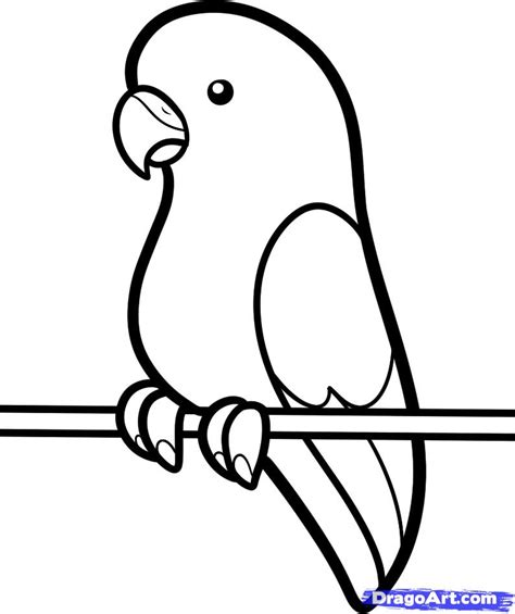 How To Draw A Parakeet For Kids Step By Step Animals For Kids For Kids Free Online Drawing Easy Drawings For Toddlers