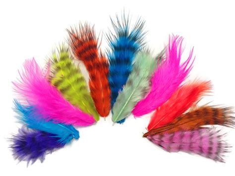 colorful feathers 0 20 oz colorful mix rooster fluff feathers moonlight