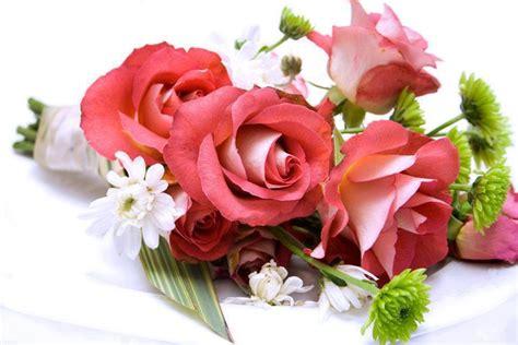 fotos muy bonitas de flores im 225 genes de flores bonitas vol 3 12 fotos imagenes y