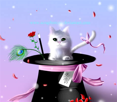 magic cat image gallery magic cat