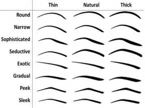 the gallery for gt eyebrow shapes