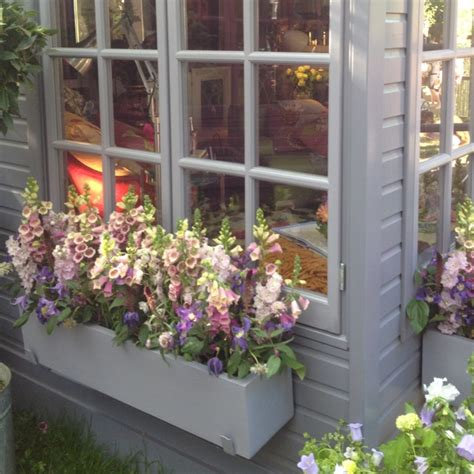 beautiful window beautiful window boxes at the chelsea flower show