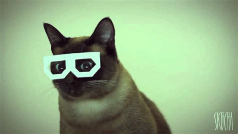 1452138923 how to be a cat dubstep cat exploding youtube