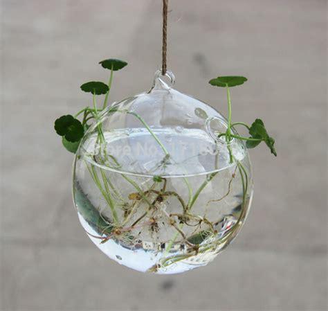 pcsset  cm blown glass globe hanging planter