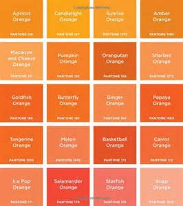 colors of orange pantone colors 9781419701801 pantone
