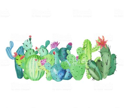 frame border   handdrawn watercolor cactus plants