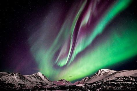 anchorage alaska northern lights 52 best anchorage eagle river alaska images on