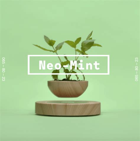 introducing  colour   neo mint tsunami axis