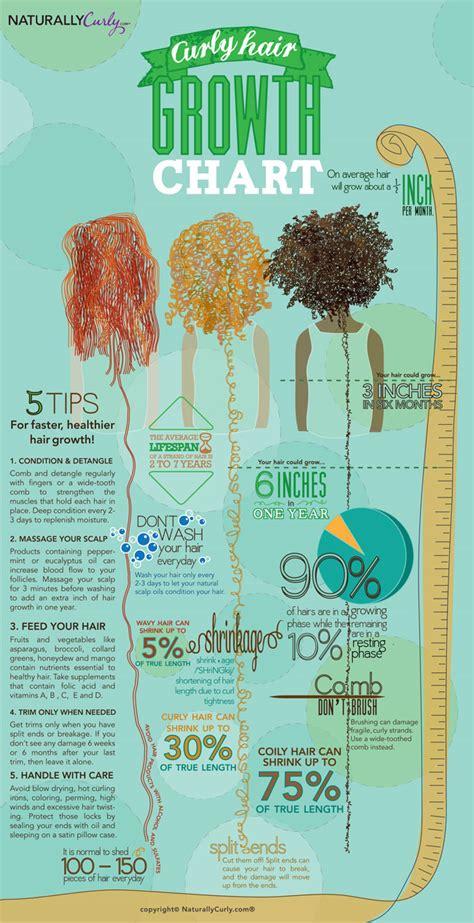 twa growth chart natural hair growth chart and tips curlynikki natural