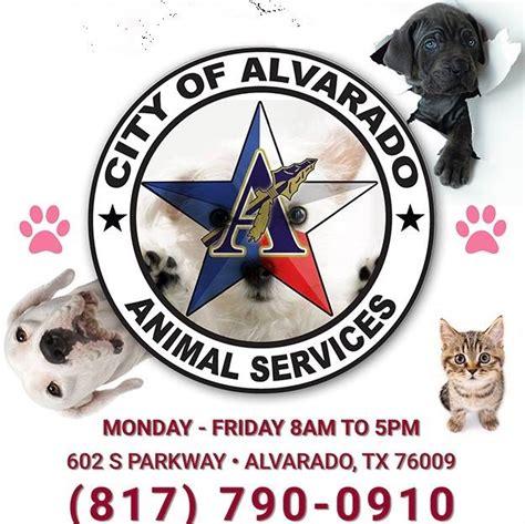 city  midlothian texas animal control home facebook