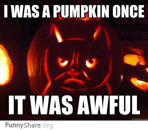 Meme Pumpkin - 5 best photos of the grumpy cat internet meme socialeyezer