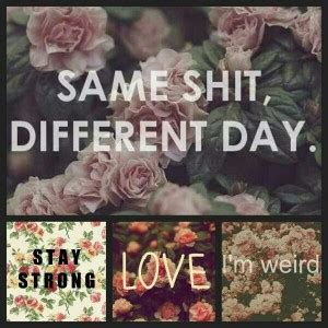 Its Just So Different by Same Different Day Quotes Quotesgram