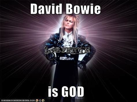 David Bowie Meme - david bowie meme google search david bowie pinterest