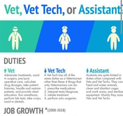 What Is A Vet Assistant Description by 1000 Ideas About Veterinarians On Veterinary Technician Veterinary Medicine And