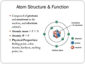 Function Of Protons Chapter 2 The Body S Chemical Makeup Ppt