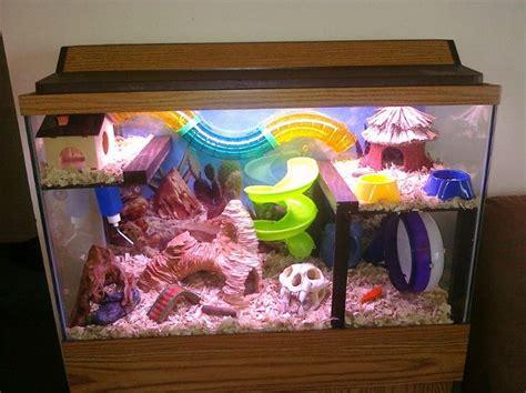 Kandang Set aquarium hamster http evobig 2012 08 inilah