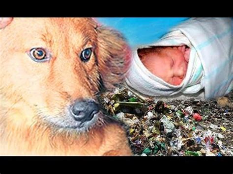 saves baby saves baby from dump site in thailand