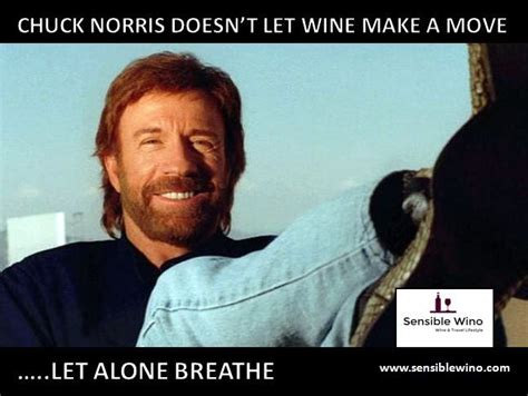chuck norris wine facts meme collection funny wine humor