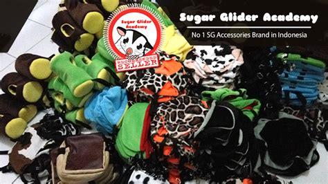 Gantungan Kunci Sugarglider F02 sugar glider academy sugar glider cage bonding pouch accessories for sale in united states
